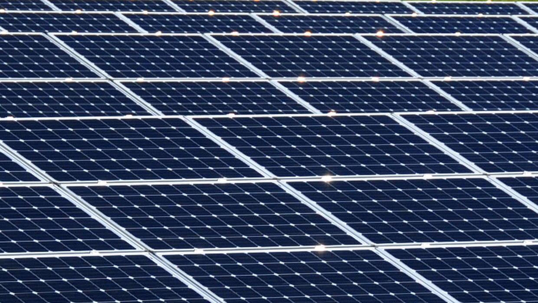 ¿Están los votantes de Florida a punto de aprobar una enmienda solar eng...