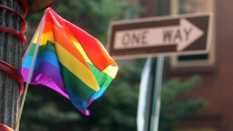 Organizaciones por los derechos de los homosexuales presionen para que u...