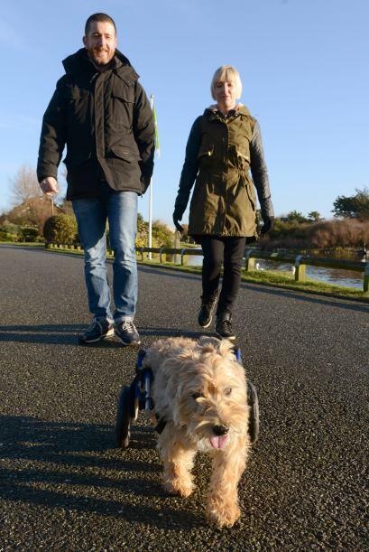 Sus dueños, Stuart y Karen no querían que Chester estuviera sin poder di...