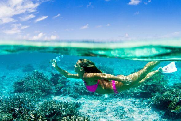 Alison no puede imaginar ver todo un océano contaminado, y aseguró que r...