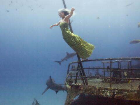 Tiene que preocuparse por la cámara, la pose y el tiburón...