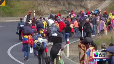 Disminuye cantidad de refugiados aceptados en el pais