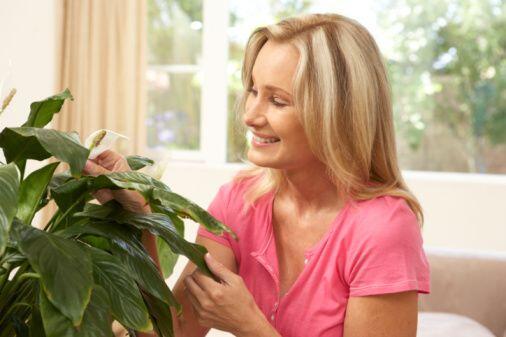 1. Cuidar de una planta Parece fácil y para muchos esto no tiene mucha i...