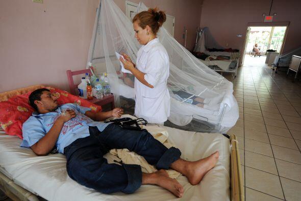 El dengue se contagia a través del piquete del mosquito, aedes aegypti.