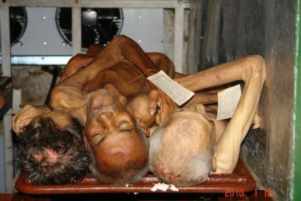 ¿Es de verdad terrible la muerte por hambre y frío?