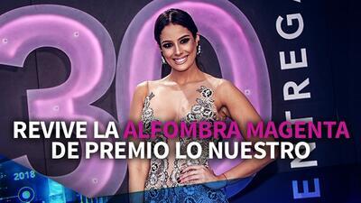Promo Thumb livestream pln 2018 revive la alfombra roja