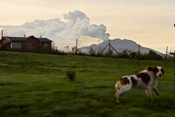 Siembras y pastizales sufrieron los daños de la actividad volcánica en e...