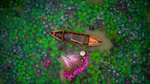 Mónica  Isola Wiesner 2nd Prize Winner, category people, Waterlily, Viet...