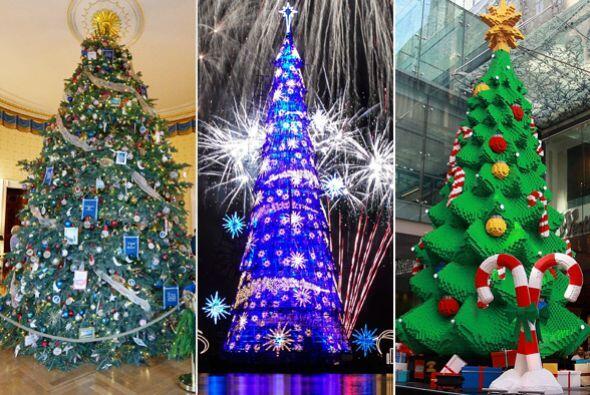 Estos árboles de navidad nada tienen de comunes, algunos han roto récord...