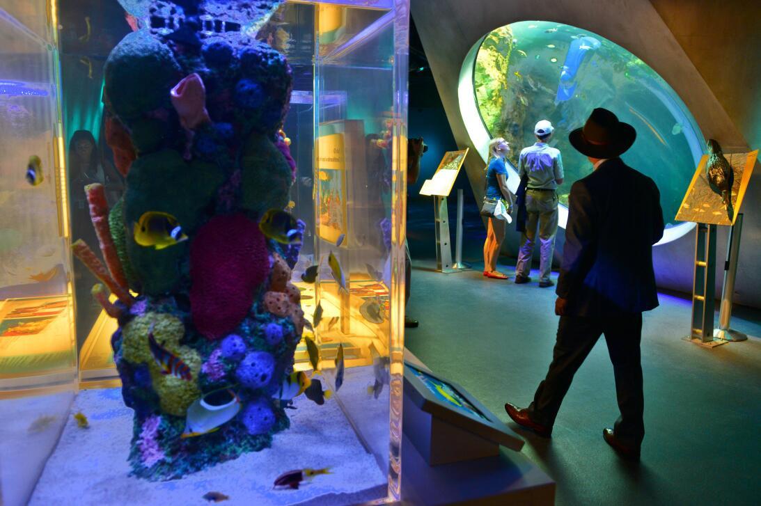En fotos: una visita por el nuevo museo de la ciencia de Miami 636298758...