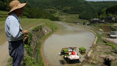 La población en el campo japonés está cada vez más avejentada.