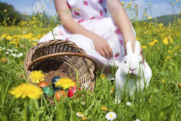¿Tu familia se está preparando para la Pascua? Toma en cuenta estas idea...