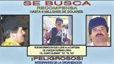 La célula criminal liderada por Joaquín 'El Chapo' Guzmán, es considerad...