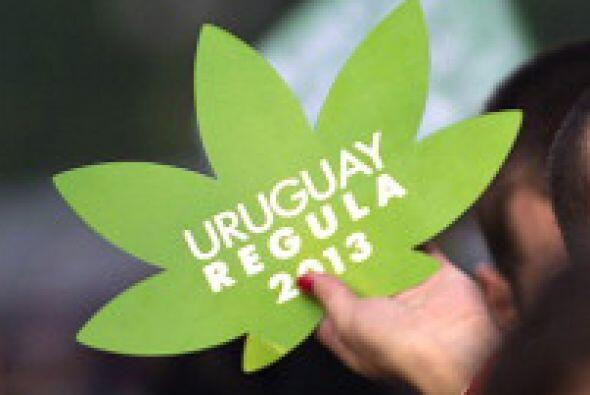 Uruguay experimentó grandes cambios con respecto a la marihuana e...