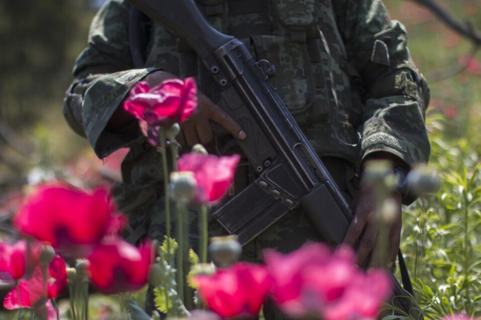 En 2016 las autoridades mexicanas reportaron la presencia de nueve cárte...