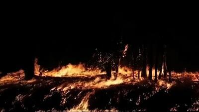 Bomberos luchan por controlar incendio en California