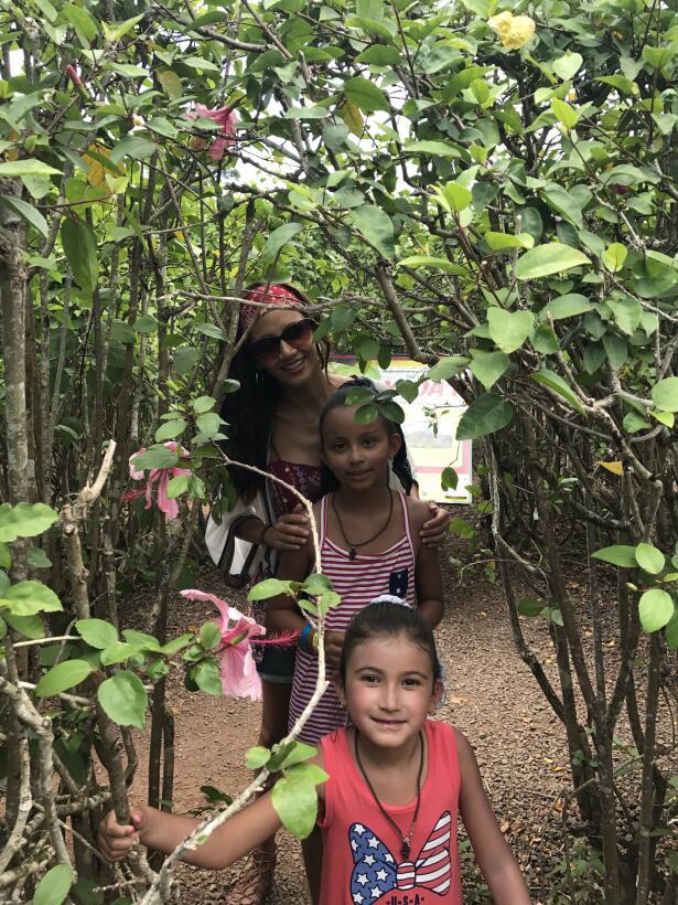 Descubrir Hawaii fue divertido porque la familia visitó lugares llenos d...
