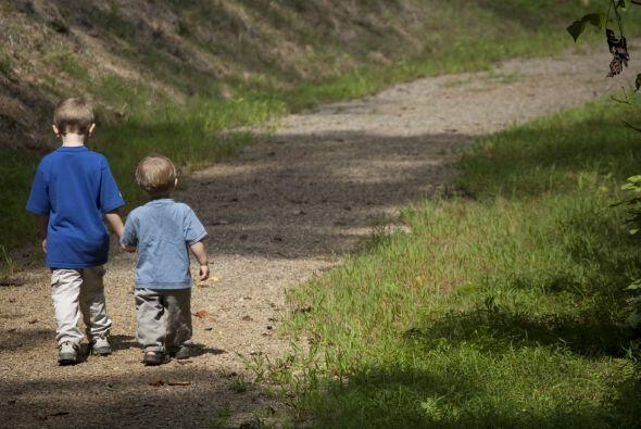 Acierto: Enseñarles valores y límites, concretamente, principios de vida...