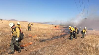 Incendio Babo consume más de 1,000 acres al sur de Arizona