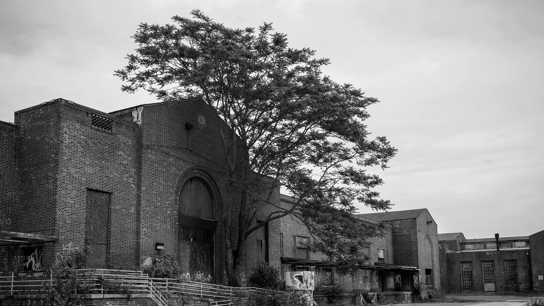 Edificios abandonados del complejo hospitalario psiquiátrico de Pilgrim...