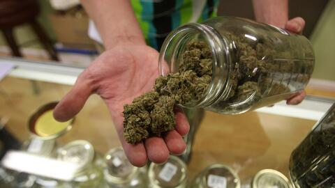 Gobernador propone vender marihuana recreacional y medicinal en los mism...