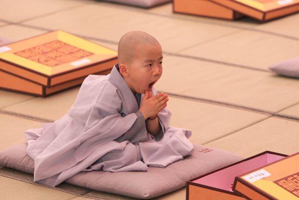 Este pequeño monje bosteza durante su meditación.