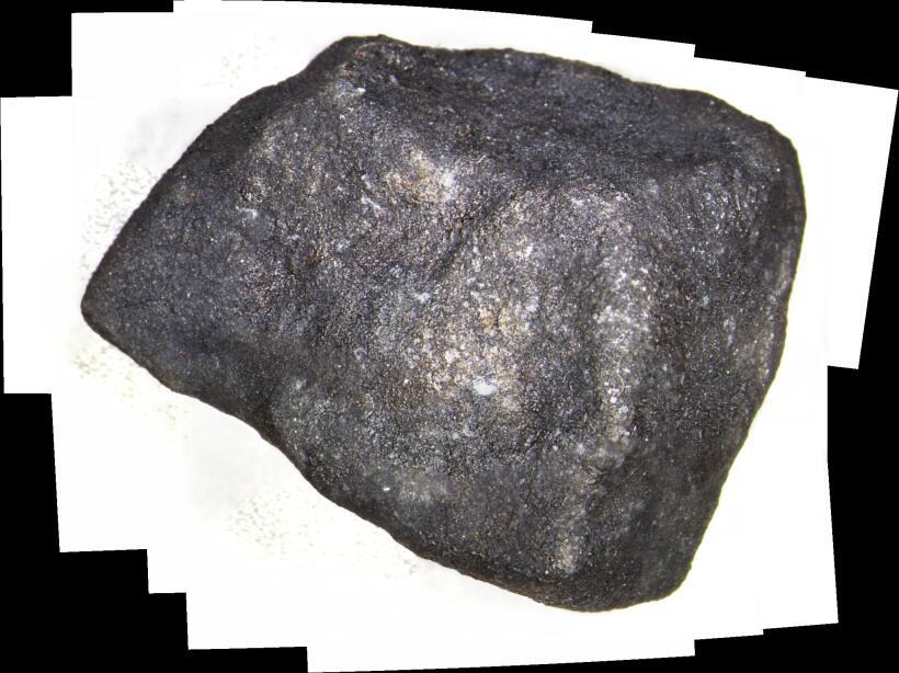 La muestra, que fue donada al Museo Field de Chicago por un cazador de m...