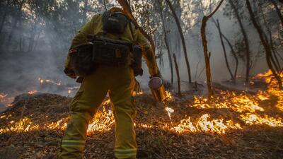 Unos 11,000 bomberos están en la zona participando de las labores.