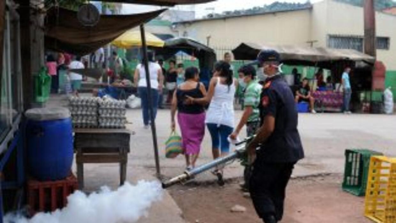 El dengue es una enfermedad que provoca fiebre alta, dolor abdominal y d...