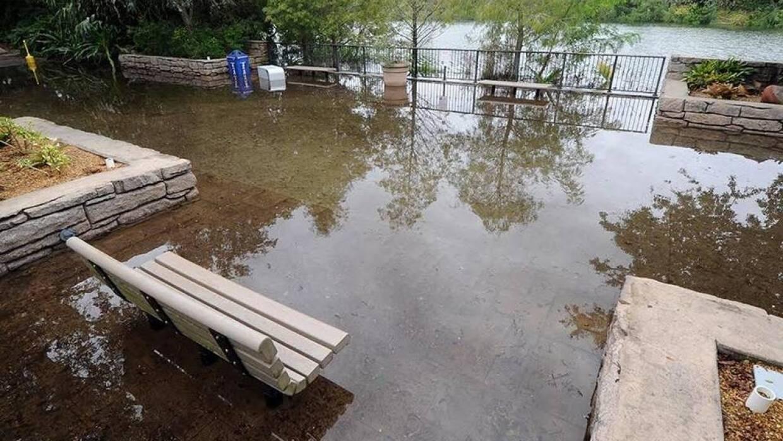 Zoo Miami bajo inundación
