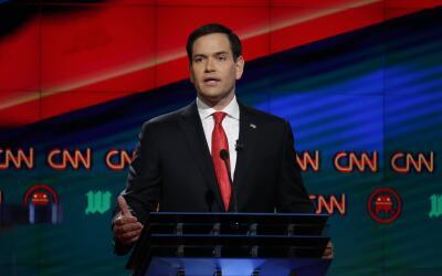 Senador Marco Rubio