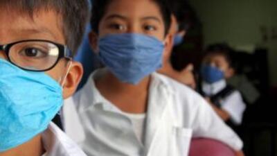 El virus AH1N1 que causó la pandemia en 2009 se convirtió en un virus es...