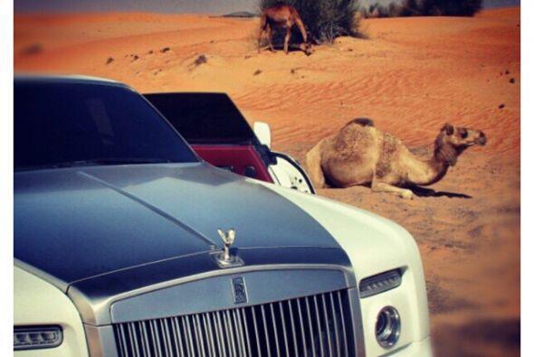Hasta pudo ver a un hermoso camello.