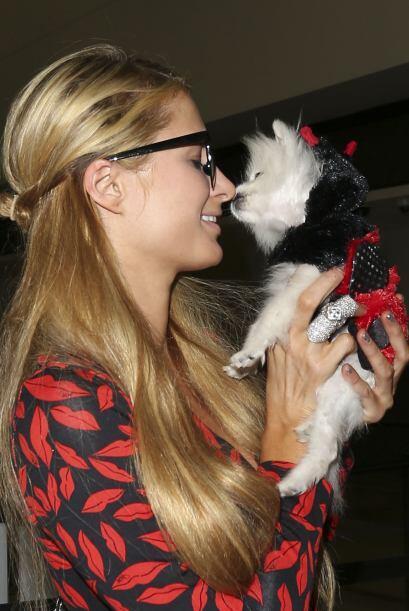 Hilton le dio un tremendo beso en el hocico a su perrito.