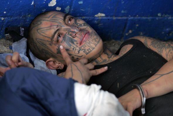 Se distinguen por tatuajes que cubren el cuerpo y también a menudo cubre...
