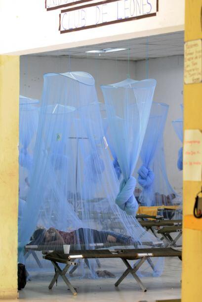 De dengue hemorrágico están reportados unos 2,555 casos, indicó Araujo.