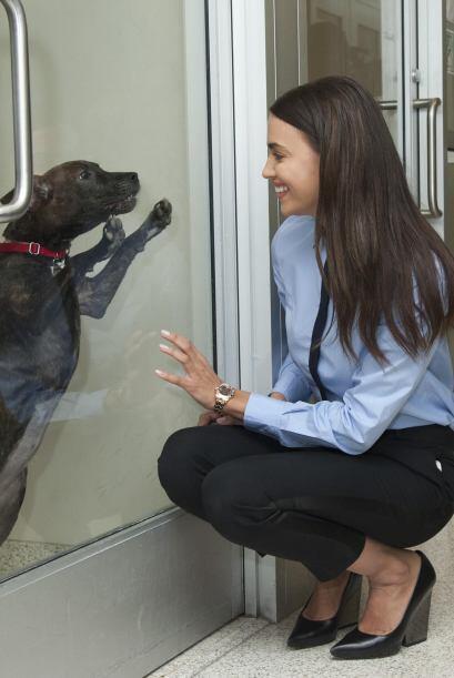 Detrás de la historia de ASPCA hay muchas personas que la han apoyado e...