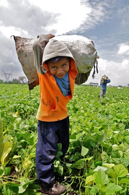 La muestra también refleja aspectos de la migración interna y el trabajo...