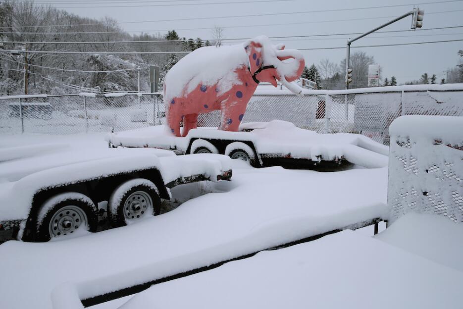 Primarias bajo la nieve en New Hampshire GettyImages-508608736.jpg