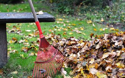 Limpieza de parques en el Día de la Tierra