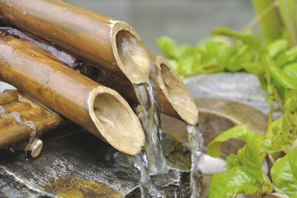Por tu parte, no olvides colocar en tu jardín una fuente, bebedero o rec...