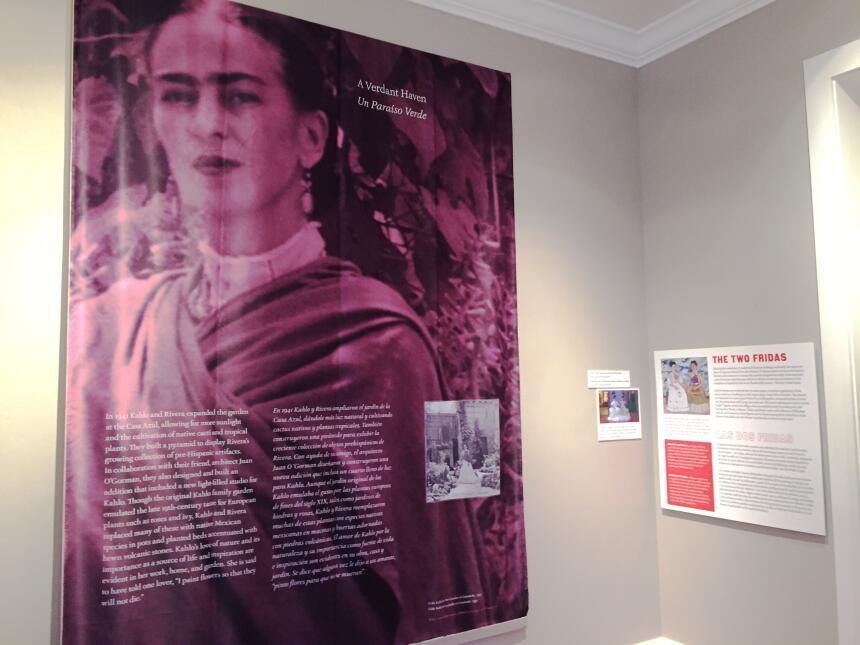 La exhibición de la Casa Azul de Frida Kahlo que llega a Tucson es un re...
