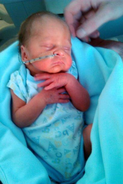 Conforme su embarazo avanzaba los doctores decidieron que debería quedar...