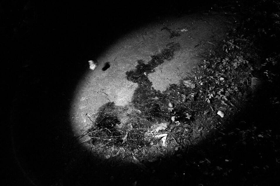 ¿Por qué la consolidación de la Mara Salvatrucha en Long Island es una d...