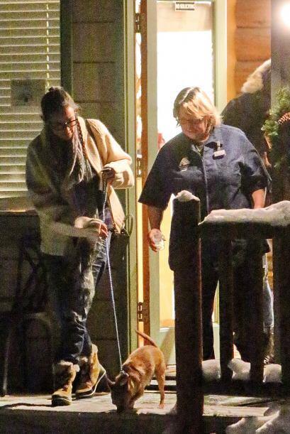 Demi Moore y su hija Rumer llevaron a dos de sus perritos a un centro en...