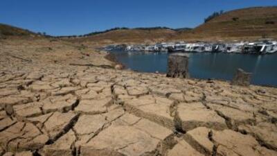 El Embalse New Melones Lake en California la reducido dramáticamente la...