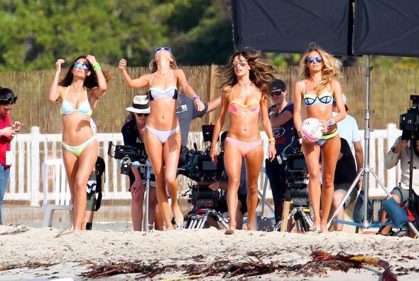 Se dice que en la Isla de Palomino, las modelos pudieron disfrutar de un...