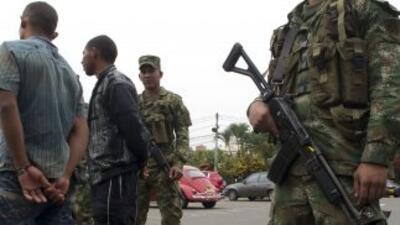 En lo que va del año al menos 13 guerrilleros del frente séptimo de las...