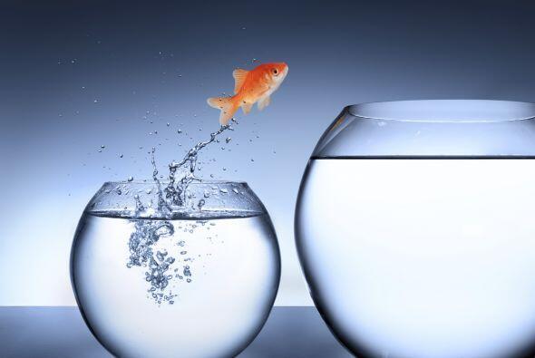 7. Confiar en tus capacidades e instintos para resolver problemas: Como...