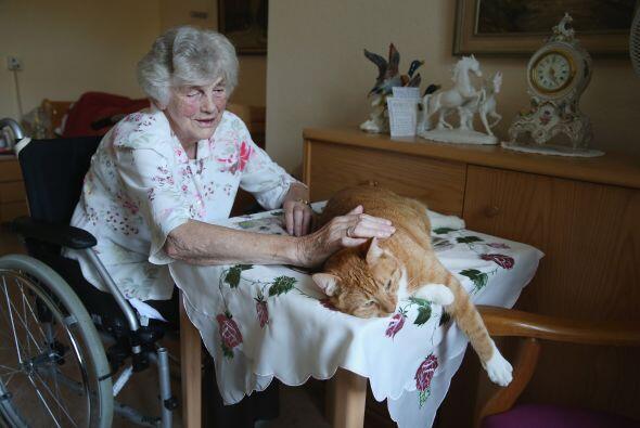 Eleonora de 84 años, una mujer del asilo que está en silla de ruedas, di...
